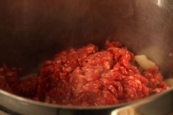 Hokkaido mos med kødsauce