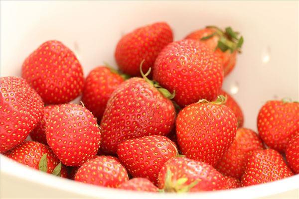Fragilité roulade med jordbær