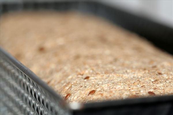 Hjemmelavet rugbrød med ristede mandler