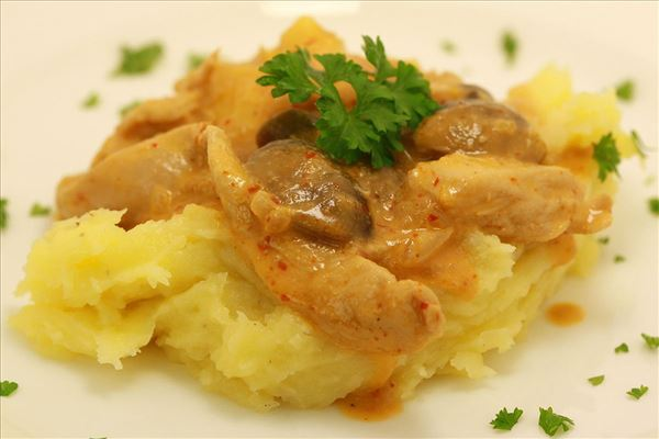 Kalkun i paprikacreme med kartoffelmos