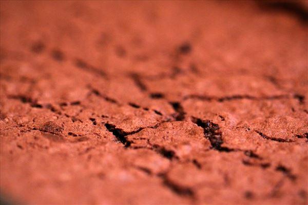 Chocoladekage, brownie