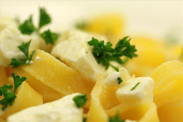 Pastasalat med feta og persille