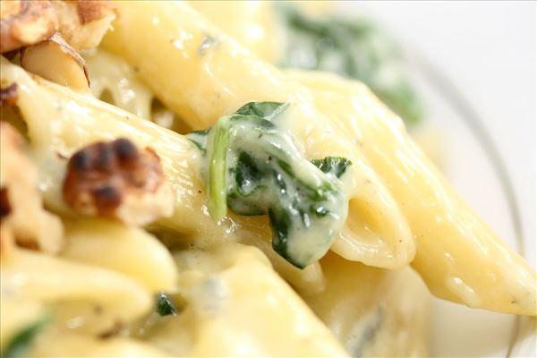 Pasta med gorgonzolasauce