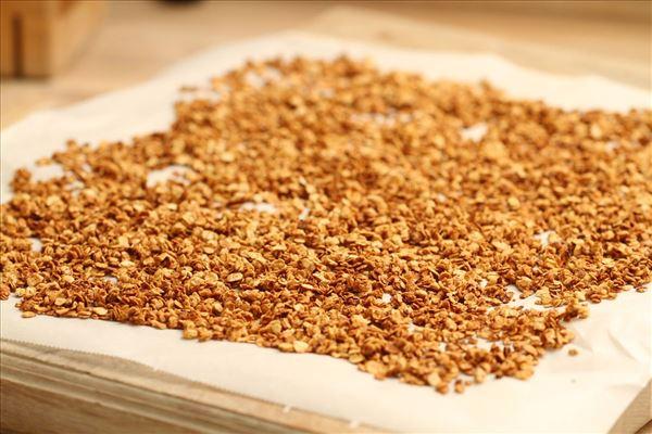 Jordbærkoldskål med honningristet havregryn