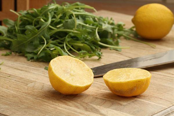 Røget lakserulle med citroncreme og rucolasalat
