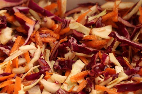 Vintersalat med kål og dressing